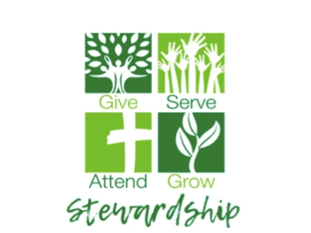 Stewardship: Meaning, Theology, and Mandate – 08/02/2020